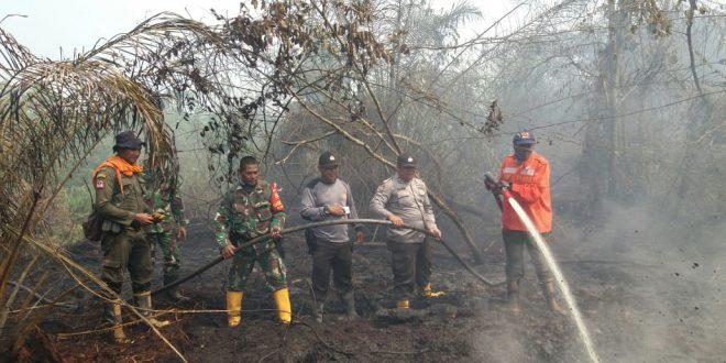 Awal musim kemarau tahun 2019 di Indonesia jatuh pada bulan April-Mei. Masa transisi musim dari penghujan menuju kemarau tersebut ditandai dengan fenomena musim pancaroba